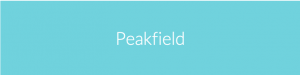 Peakfield Consultancy Ltd